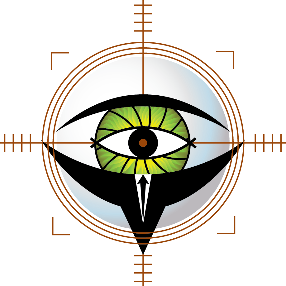 Big Brother Security Logo